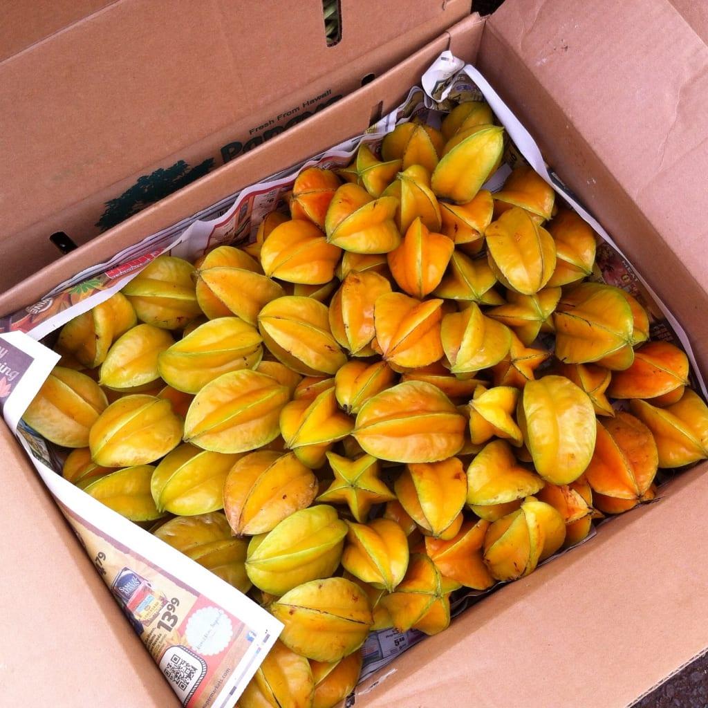 star fruit, Kauai